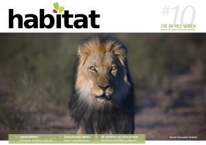 Habitat#10_low